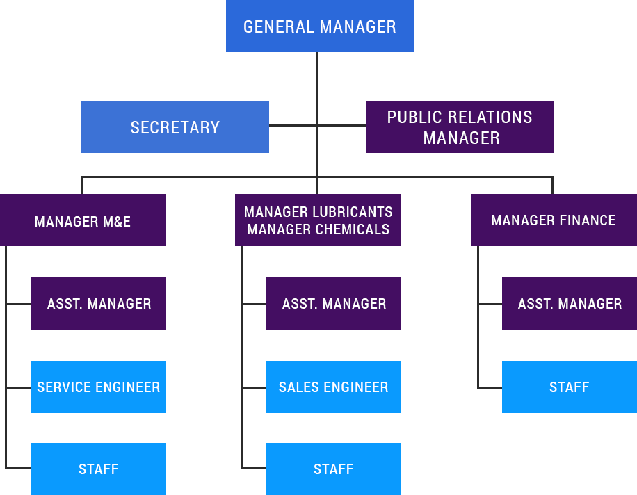 Classification of the Organization